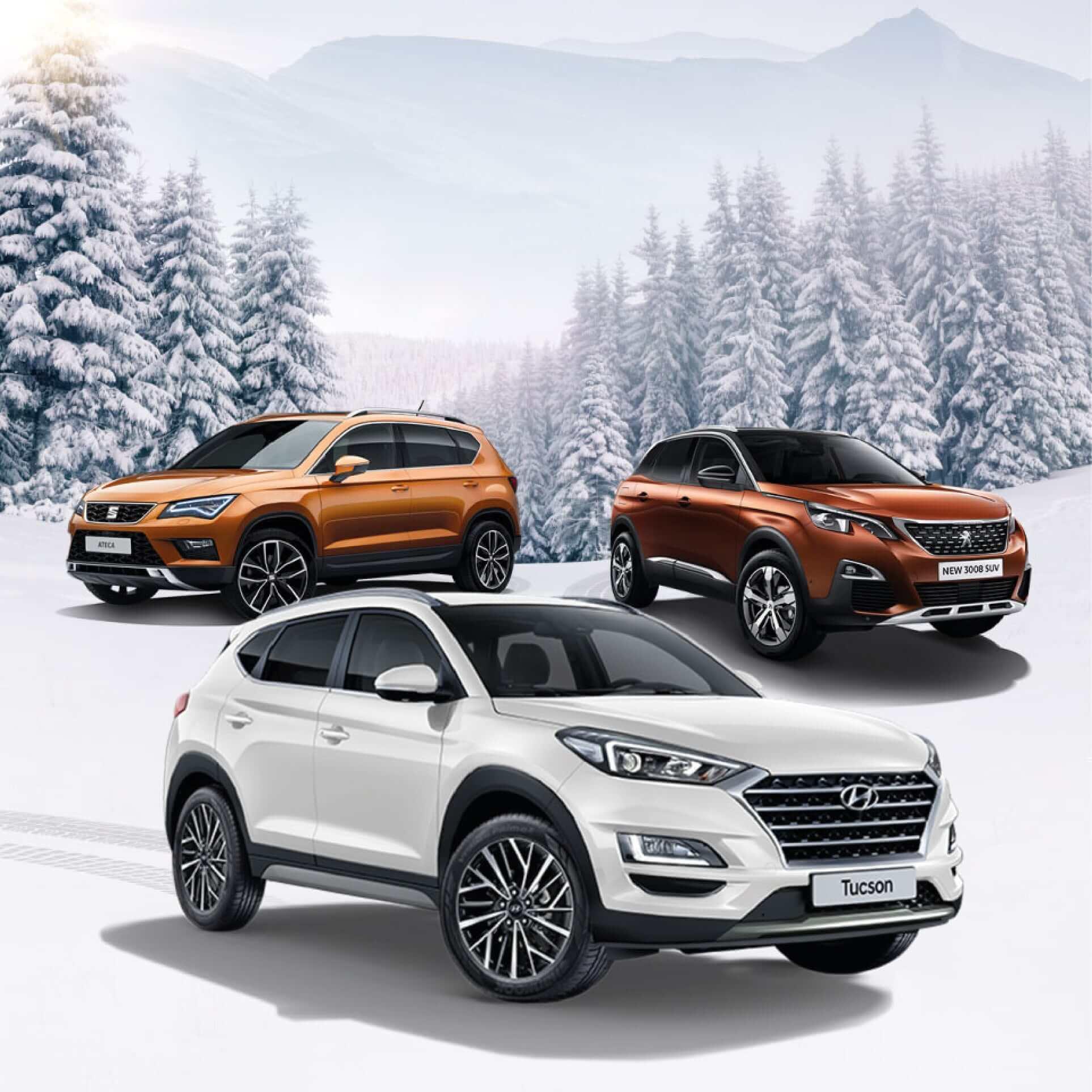 Cars 2 Winter SUV picture